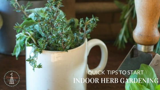 use these quick tips to start indoor herb gardening and enjoy the fruits of your labor - How To Start An Indoor Herb Garden