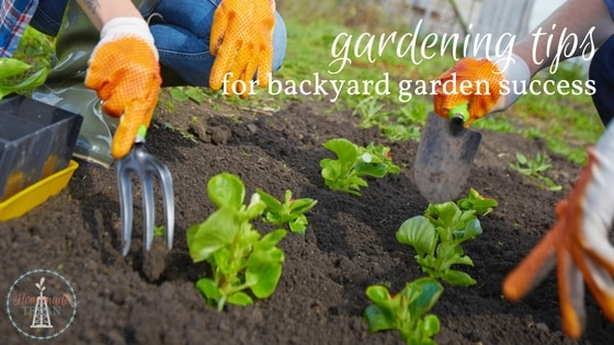 These Are My Own Personal Top Gardening Tips To Make Your Backyard Garden  Experience Fun And Easier This Year. Get Started Early To Make The Most Of  The ...