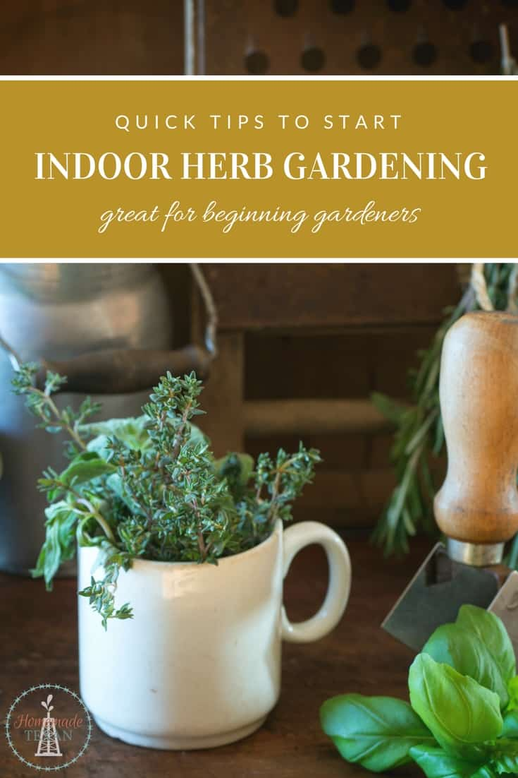 Herb Gardens Are A Great Way For Beginning Gardeners To Learn How Grow Their Own